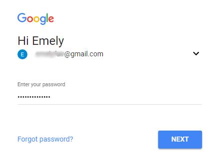 masukkan password email anda