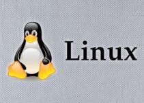pengertian linux, sejarah linux dan perkembangan linux