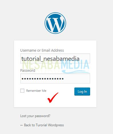 cara menggunakan xampp untuk membuat website