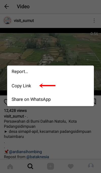 3 - copy link