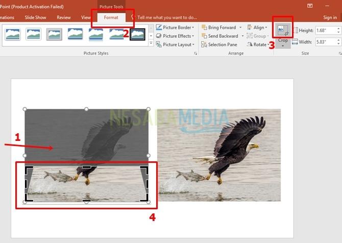 Cara Membuat Powerpoint 3D