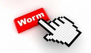 Jenis Virus Komputer - Worm