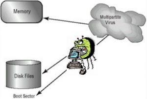 Jenis Virus Komputer - Multipartite