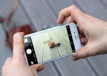 Cara Mematikan Kamera Iphone