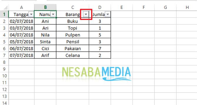 cara memfilter data dalam range atau tabel di Ms. Excel