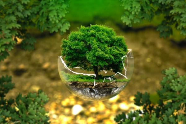 komponen lingkungan