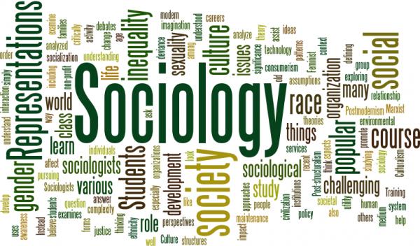 fungsi sosiologi
