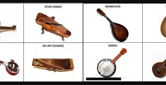 jenis alat musik petik