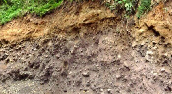 jenis -jenis tanah andosol