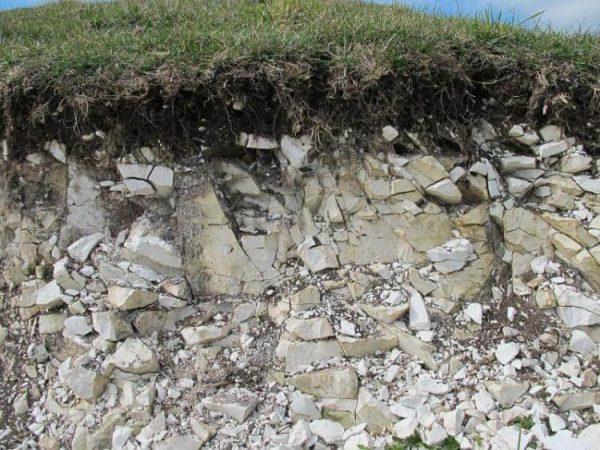 Jenis Tanah Megel