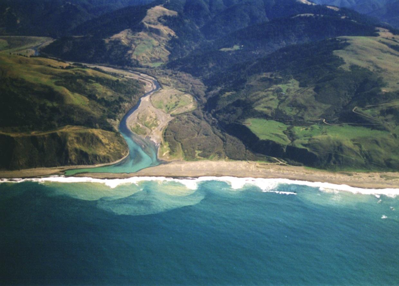 Ekosistem Estuari