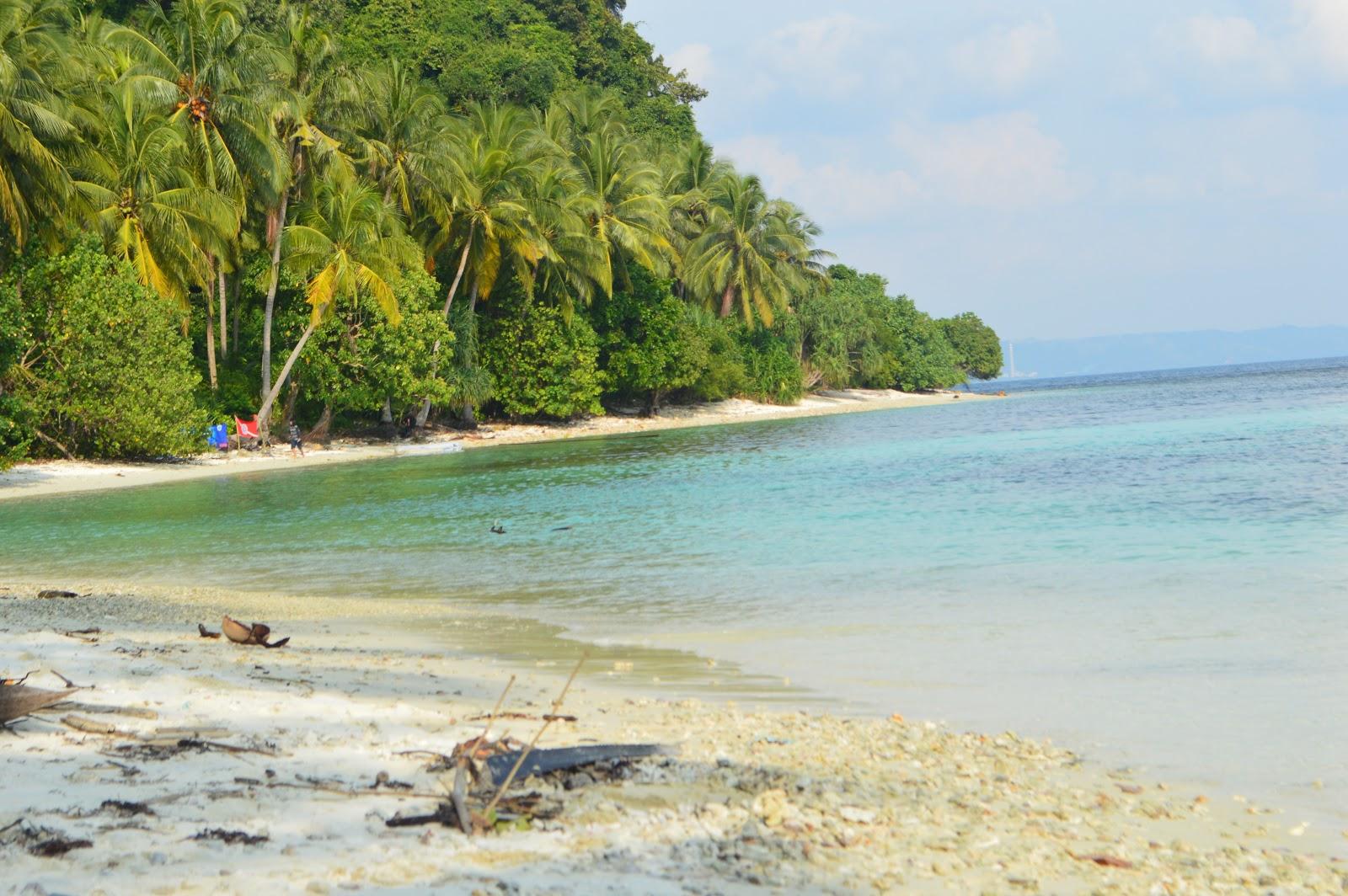 Ekosistem Laut Pantai