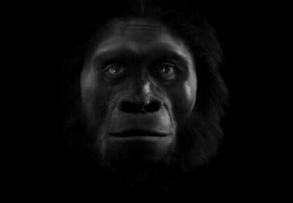 Jenis-Jenis Manusia Purba - Meganthropus Paleojavanicus
