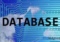 Kegunaan dan Fungsi Database