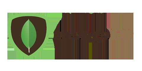 MongoDB Database Application