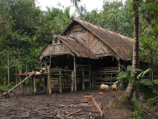 West Sumatra Traditional House of Mentawai