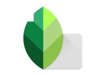 Download Snapseed for Windows Terbaru