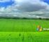 Tema Windows XP Desktop